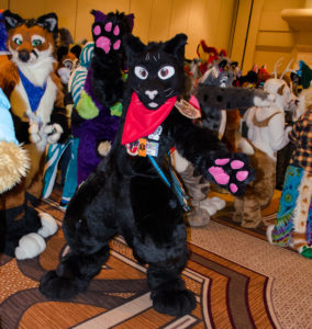 An energetic cat strikes a pose at Furthe'More 2017